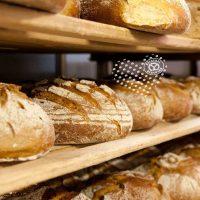 Brot aus der Buckligen Welt